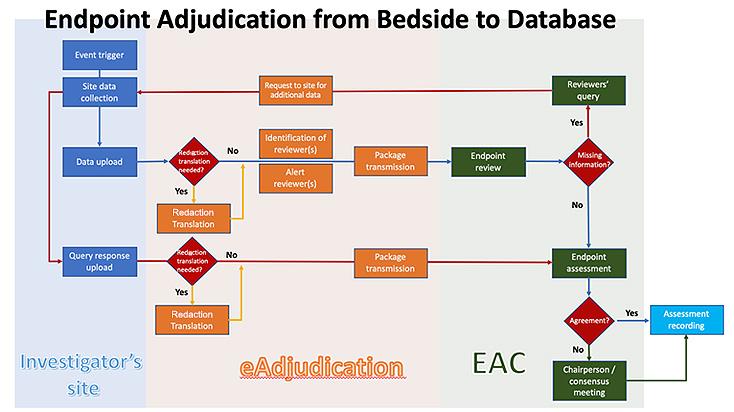 The Facilitator Role of an Electronic Adjudication Platform