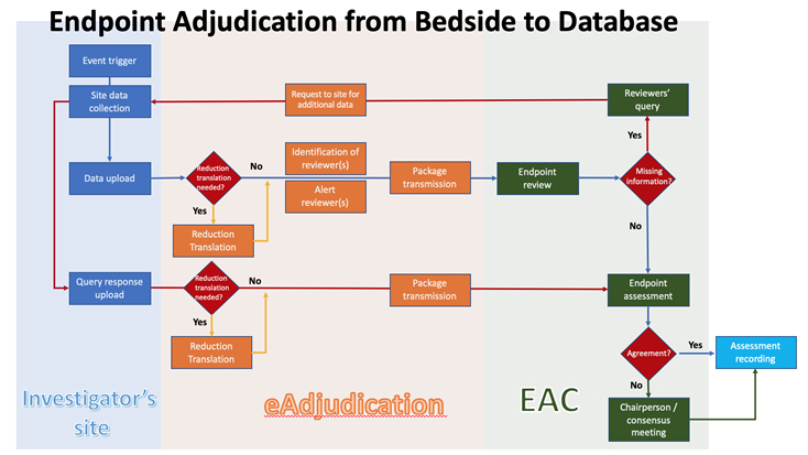 Endpoint Adjudication Process Flow with Ethical eAdjudication